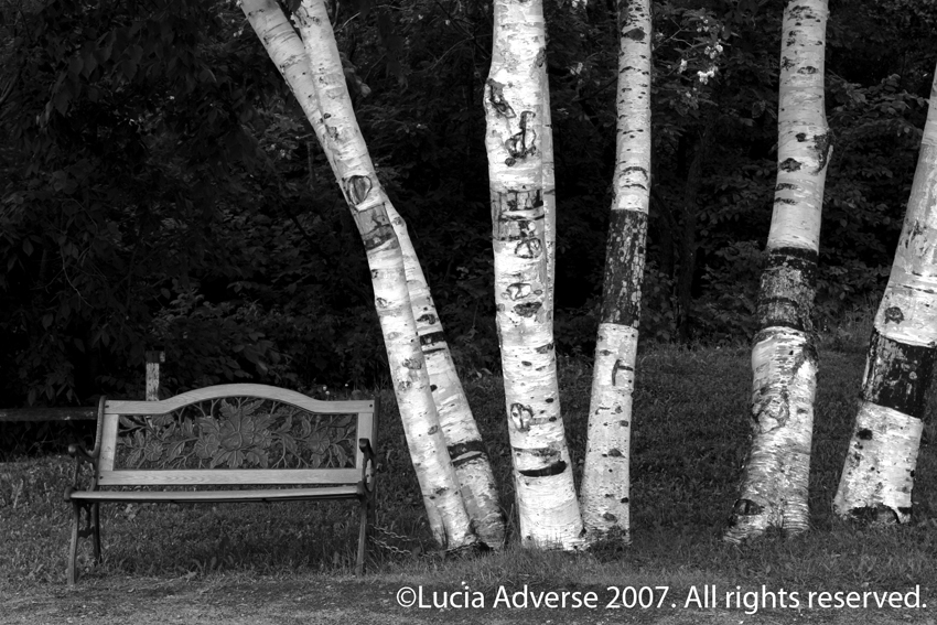 ©Lucia Adverse 2009. All rights reserved.