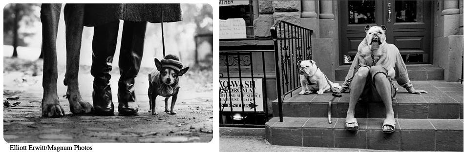 Elliott Erwitt-Magnum Photos
